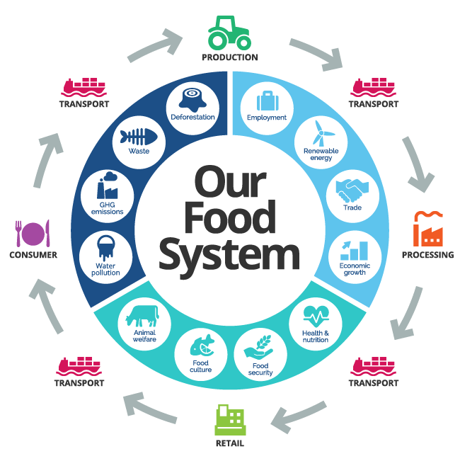 | Food Systems Thinking
